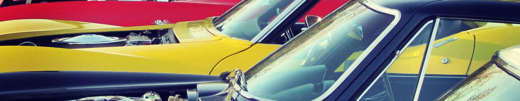 our 2015 car show